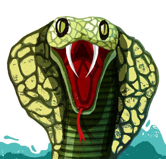 375 Flying snake